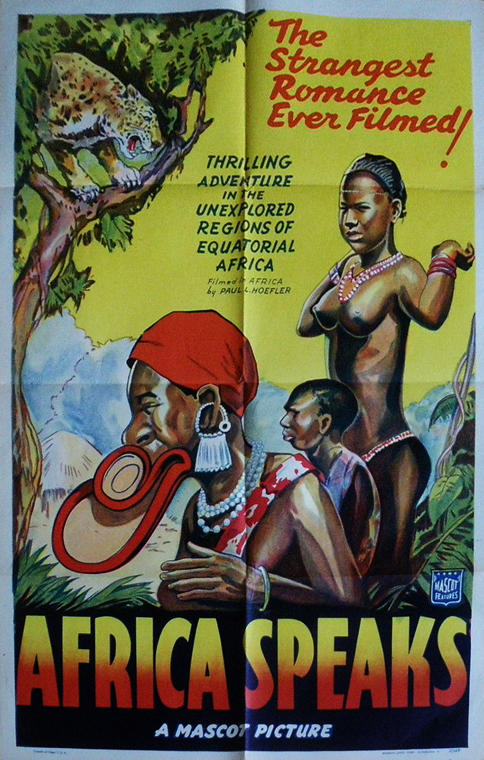 Africa Speaks 1 Sheet